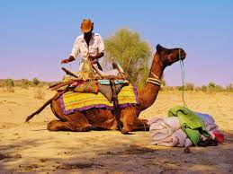 Rajasthan government approves training and licensing of 6000 new tourist guides