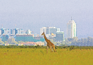 Kenya Reopens Borders For Indian Travellers to Rediscover The Magic