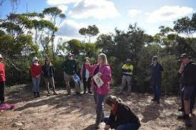Domestic tourism boom in Western Australia is threatening local plant species
